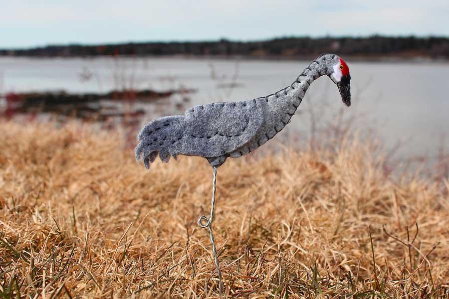 The Elegant Sandhill Crane