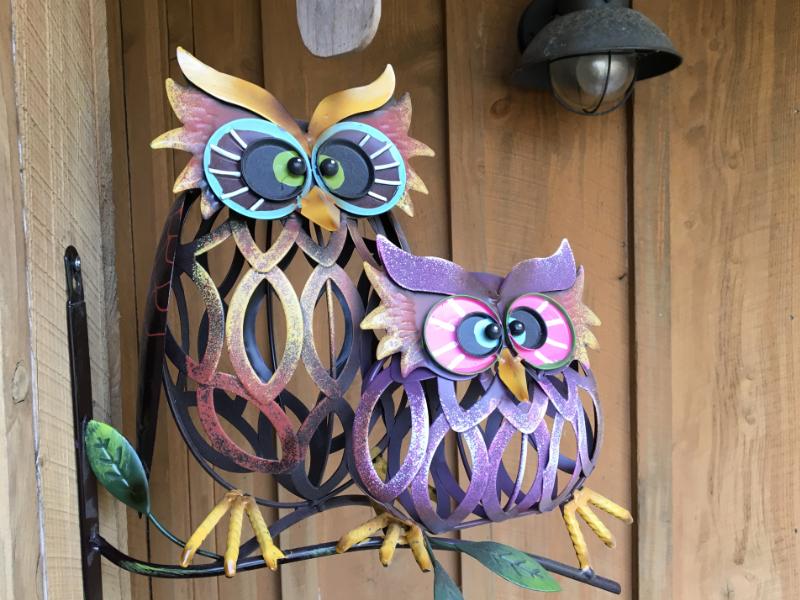 Owls Among Us