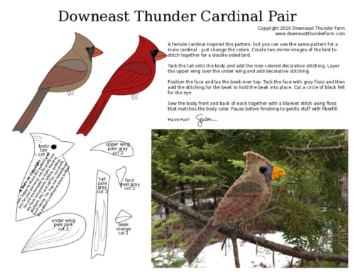 male and female cardinal pattern