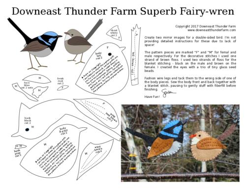 male female fairy wren