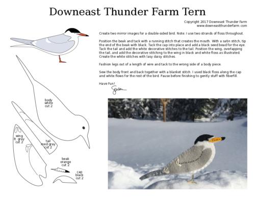roseate tern pdf pattern