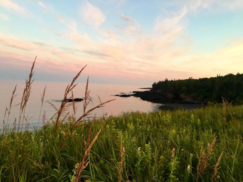 Bog Brook Cove Bluff