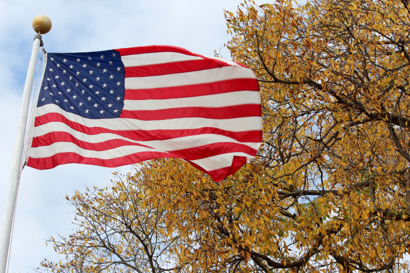 old glory and elm trees