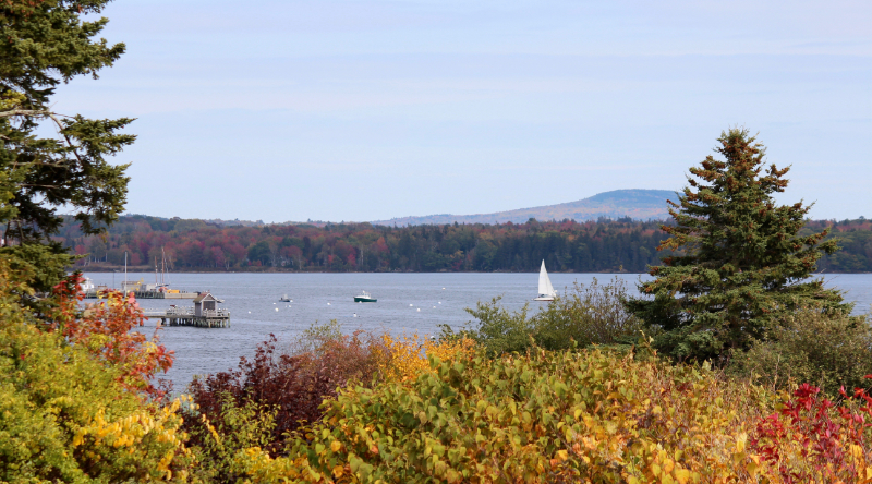 Out and About in Castine