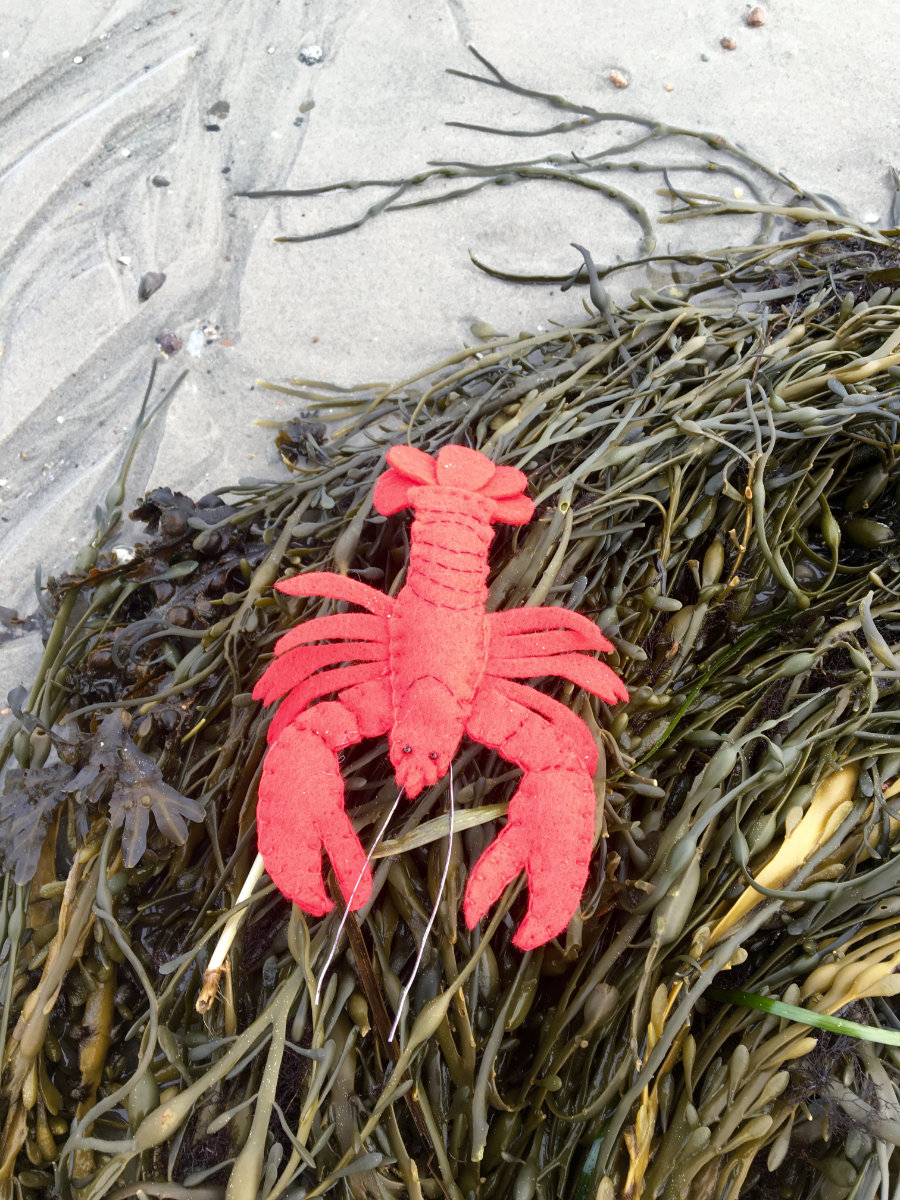 The Lonesome Lobster