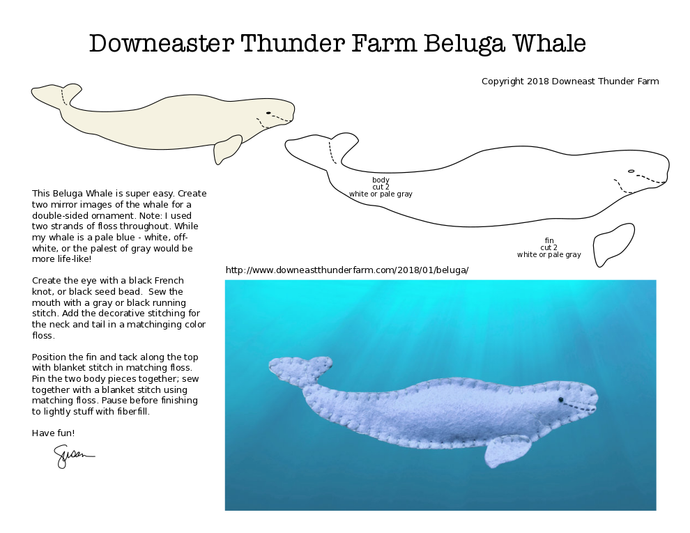 The Gregarious Beluga Whale pattern from Downeast Thunder Farm