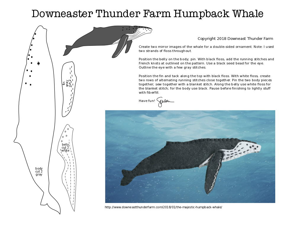 Humpback PDF pattern for download at Downeast Thunder Farm