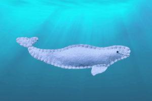 printable beluga whale pattern