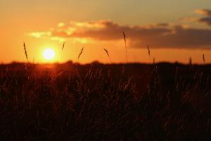 Barren Sunset by Hannah S. Bennett