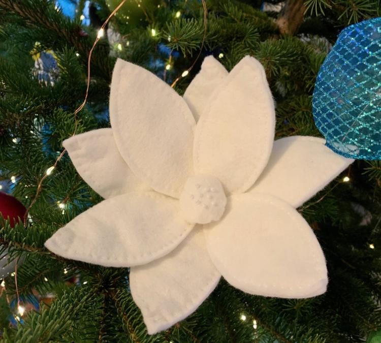 Downeast Thunder Farm Christmas Flower
